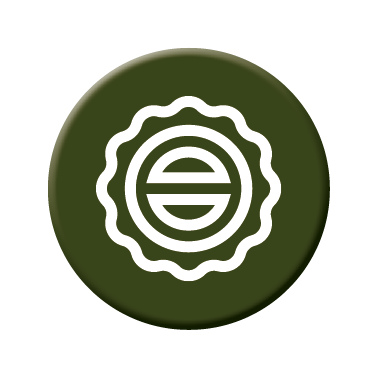 Picto quality vert avec une estampille