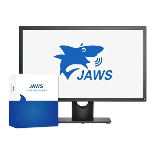 JAWS 2021 - Logiciel de revue d'écran